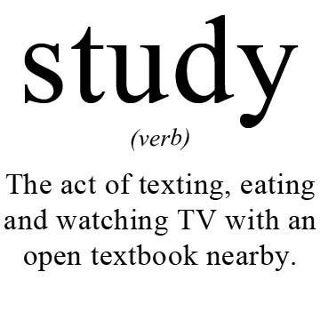 study-noun